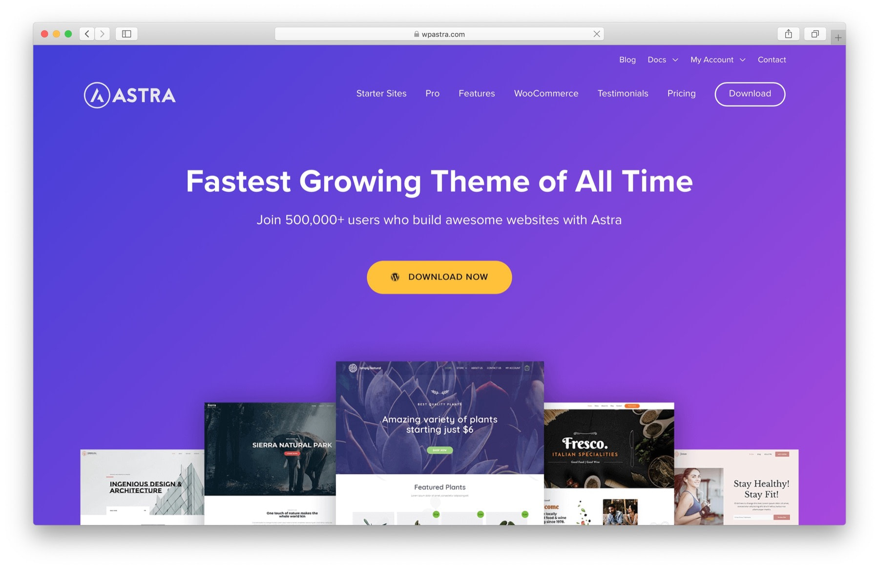 WordPress Black Friday 2019: astra