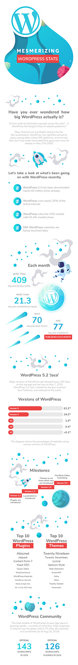 infographic WordPress stats 2019 preview