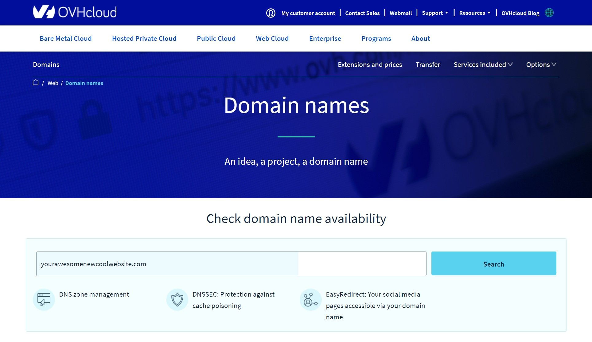 How to buy a domain name at OVH