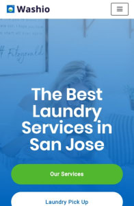 neve laundry services mobile