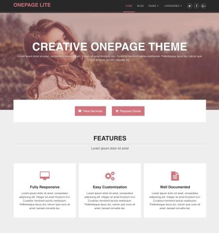 Best free WordPress themes #8: onepage lite