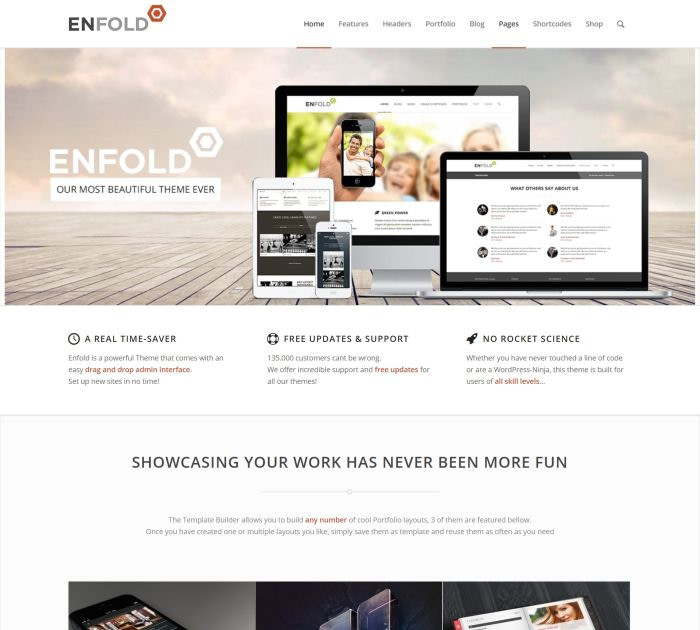 Best WordPress themes #10: enfold