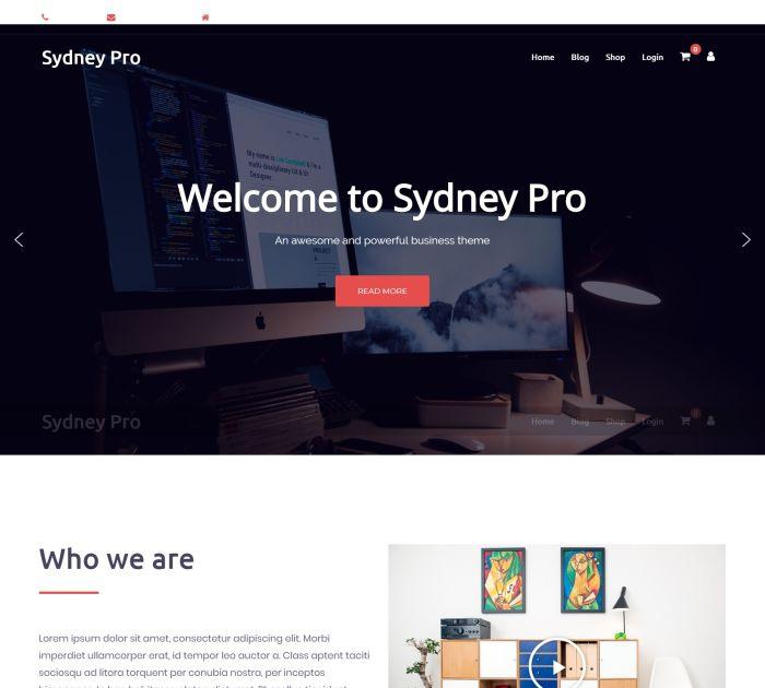 Best WordPress themes #4: sydney pro