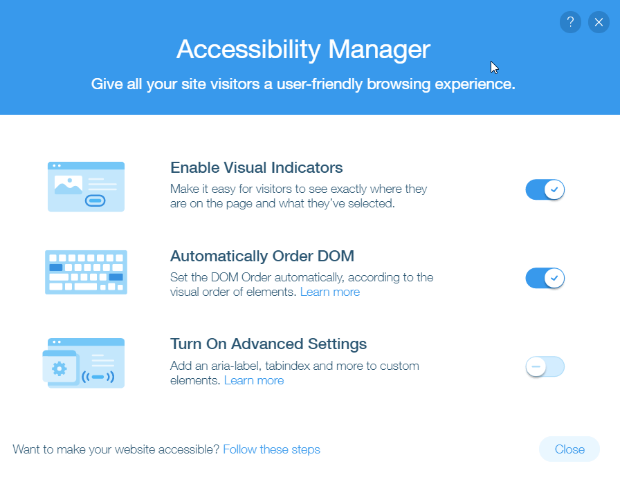 Wix SEO accessibility manager page