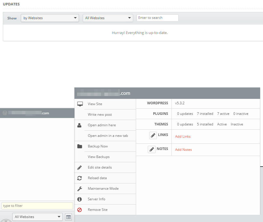 Inspecting a website with InfiniteWP.