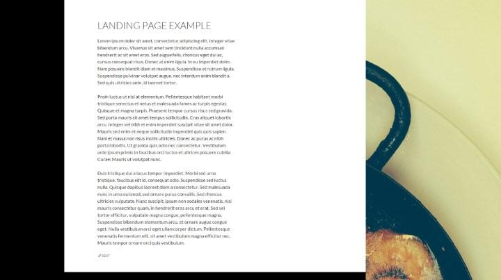 Landing page in WordPress example