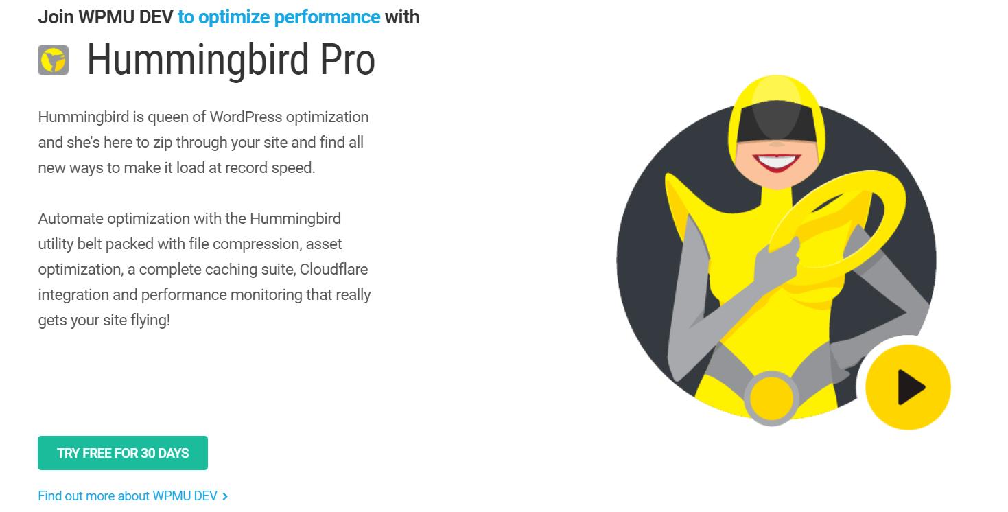 The Hummingbird homepage.