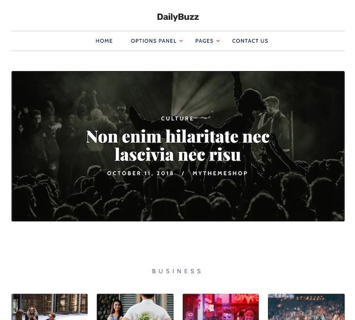 SEO friendly WordPress themes: dailybuzz