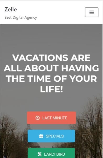 Neve Travel Agency on mobile