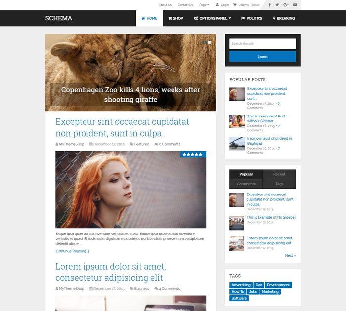 SEO friendly WordPress themes: Schema