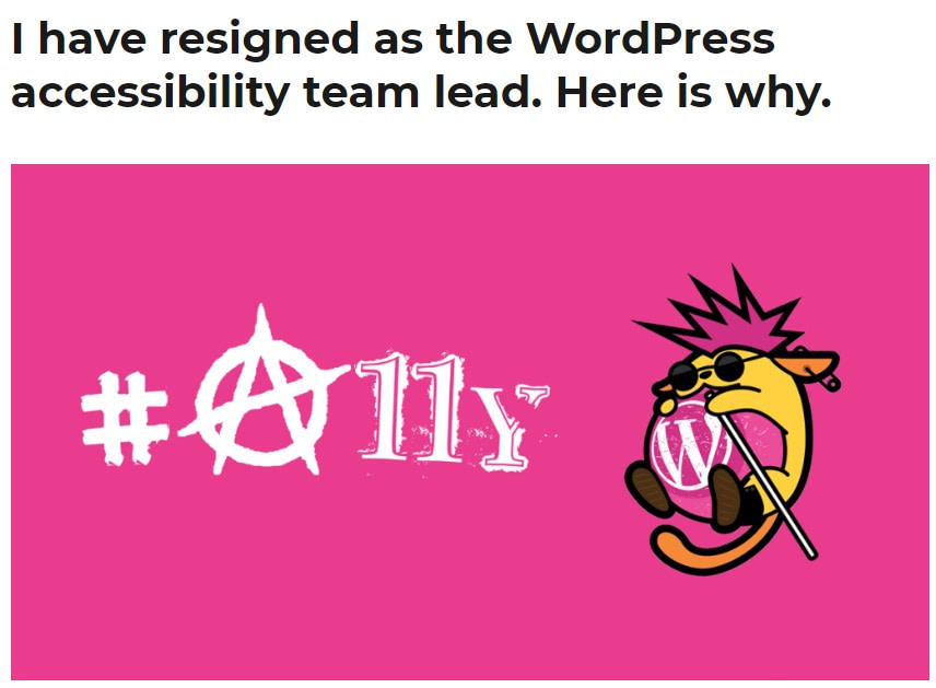 accessibility team