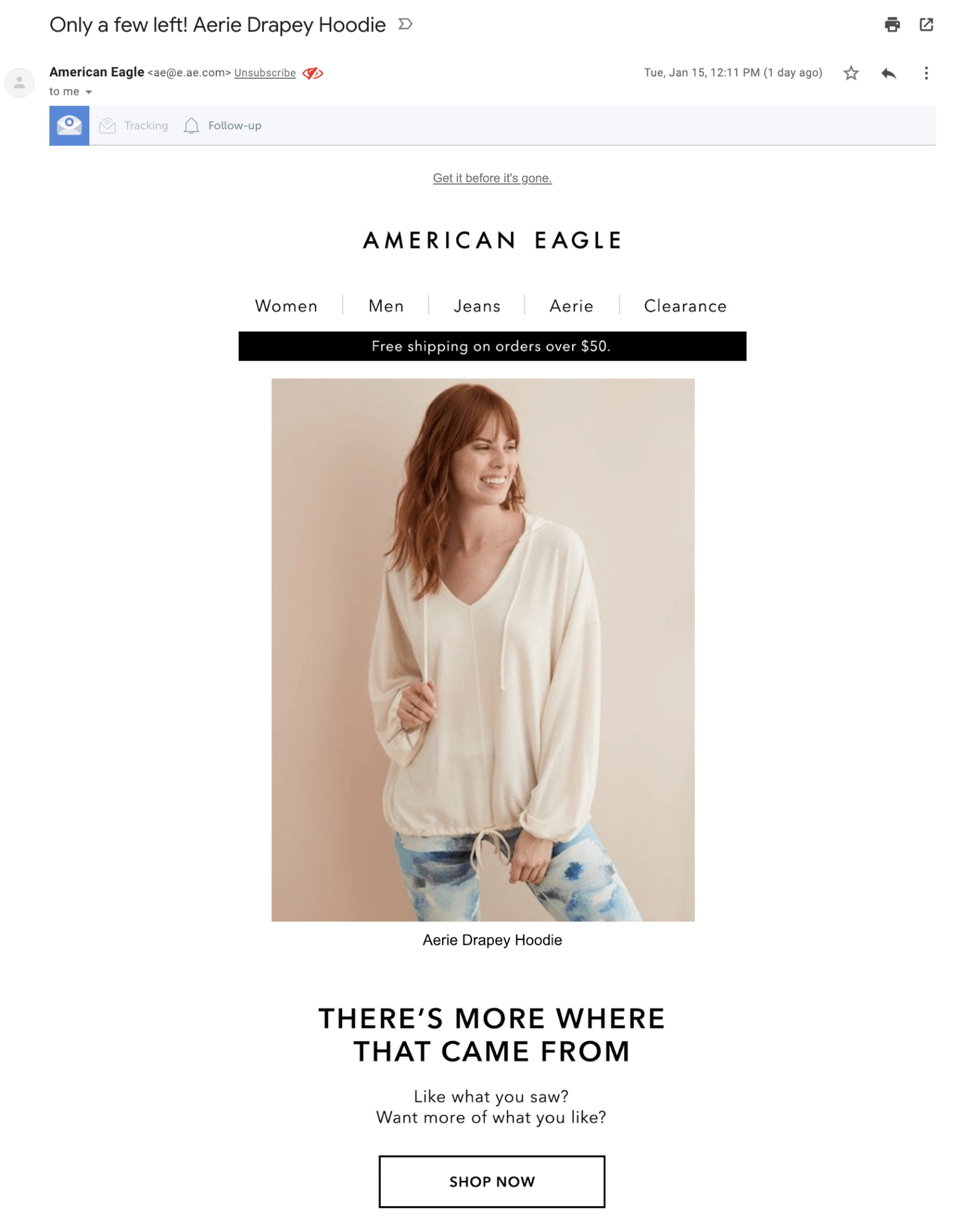 American Eagle's abandoned cart email