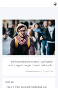 AdminPro on mobile