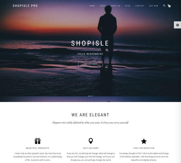Best WordPress themes: shopisle pro