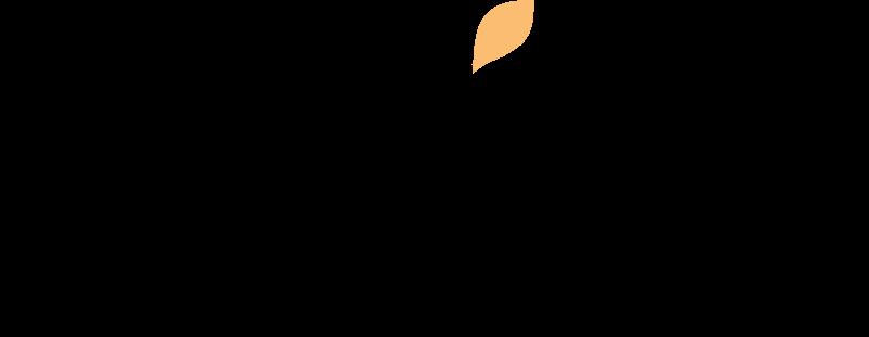 Website builder comparison chart: Wix