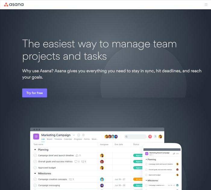 Best project management software: Asana
