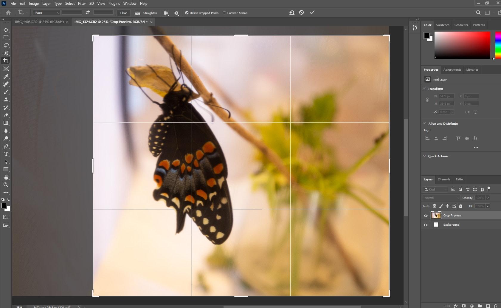 photo cropping in photoshop - Photoshop vs Illustrator vs InDesign