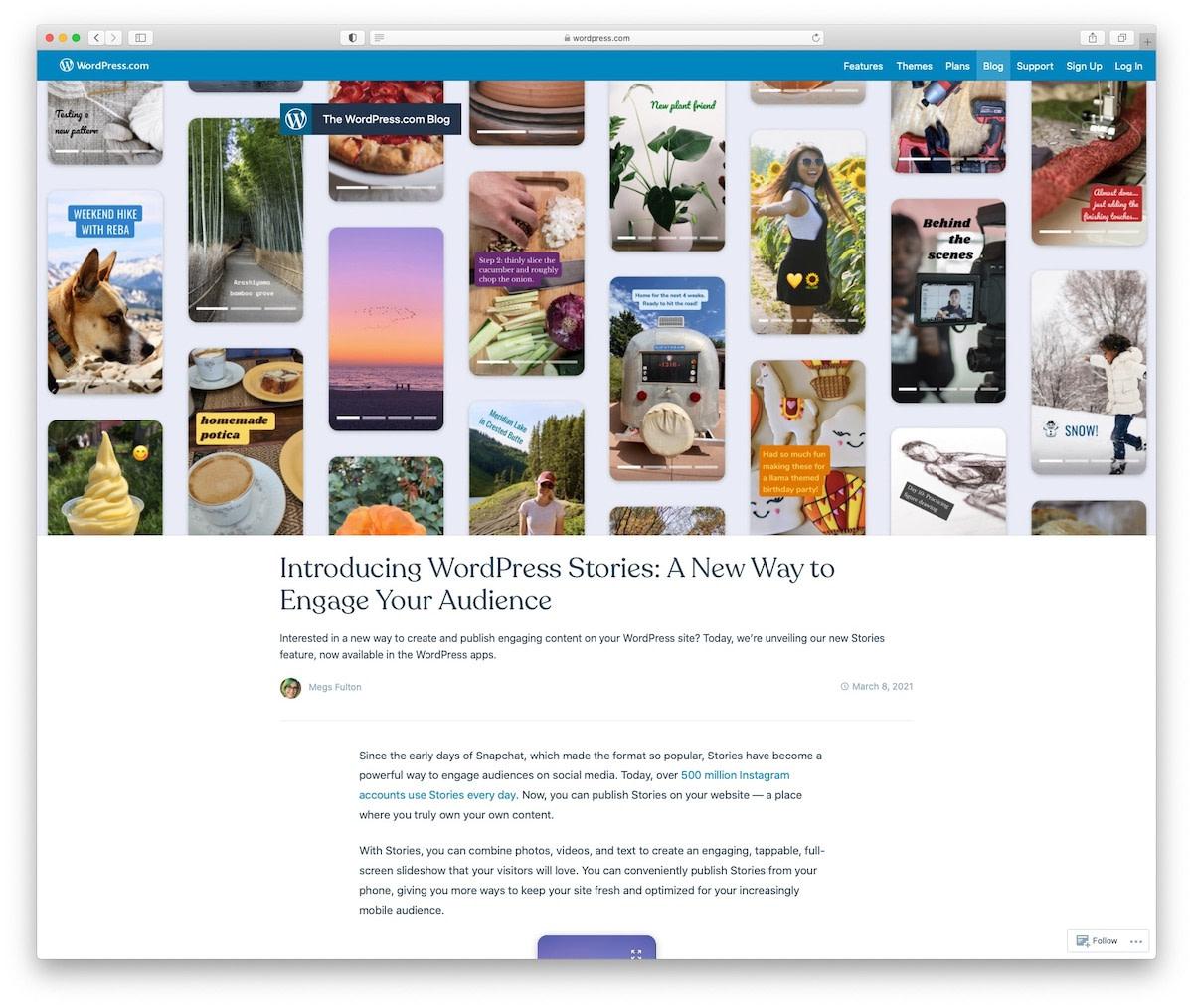 WordPress Stories