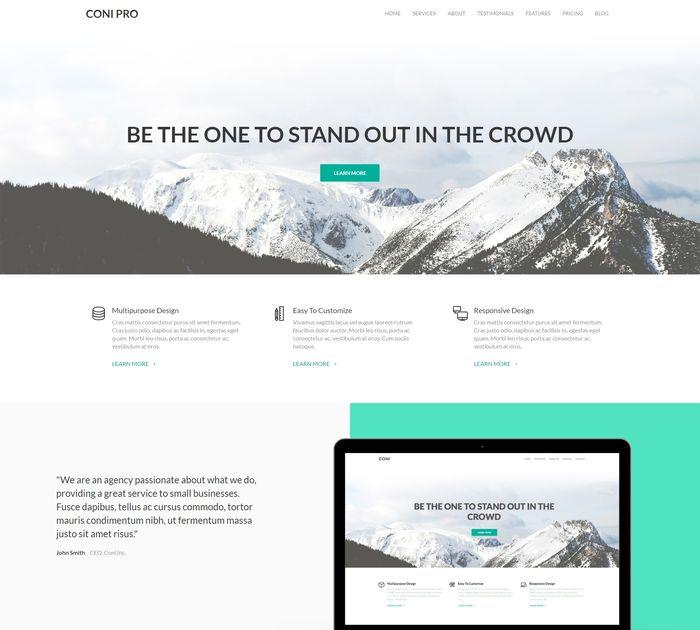 SEO friendly WordPress themes: Coni Pro
