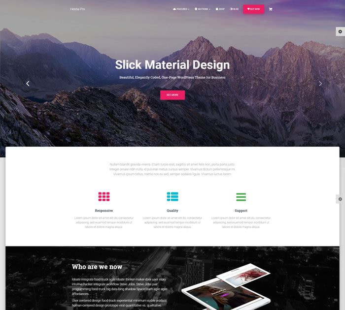 Best WordPress themes #2: Hestia Pro