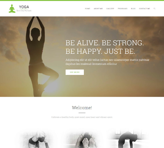 yoga WordPress themes #2: OceanWP