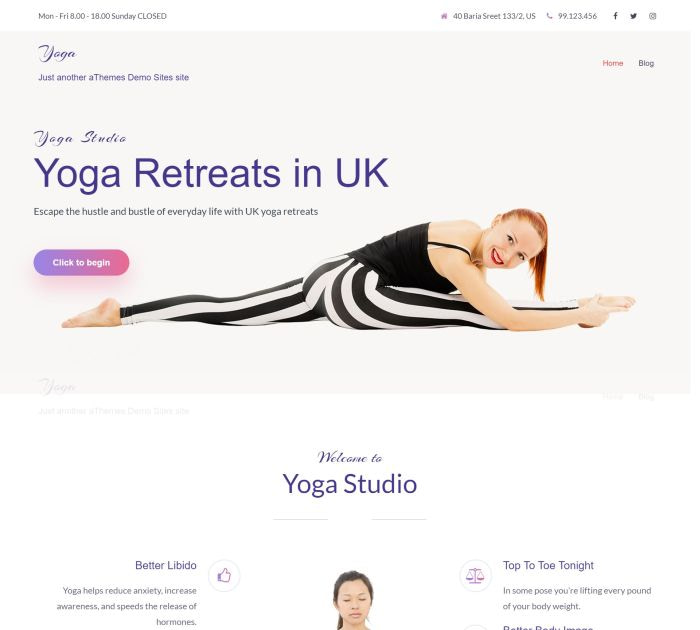 yoga WordPress themes #4: Sydney