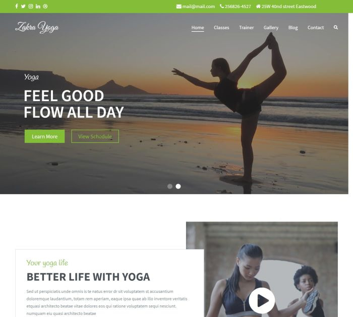 yoga WordPress themes #5: Zakra