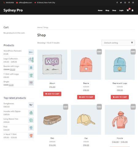 Best WooCommerce WordPress Themes: Sydney Shop