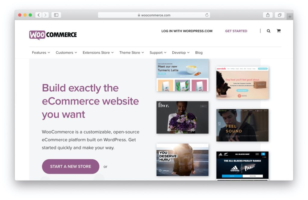 Best Shopify alternatives: WordPress and WooCommerce