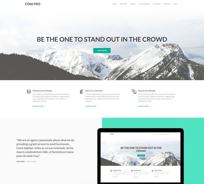 SEO friendly WordPress themes: Coni Pro