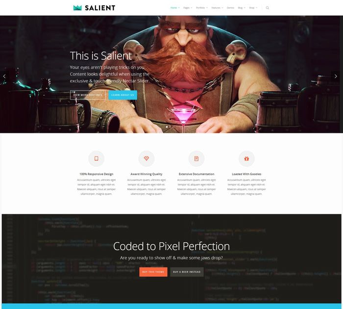 SEO friendly WordPress themes: Salient