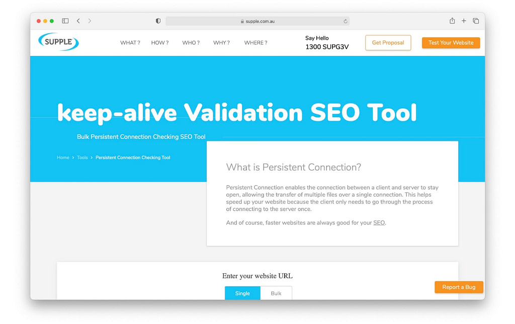 Keep-Alive validation SEO tool for technical SEO