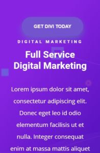 Divi on mobile