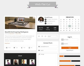 Web Flat Gui view
