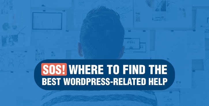 Where to Find the best WordPress help