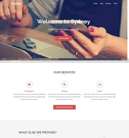 Best free WordPress themes #6: sydney