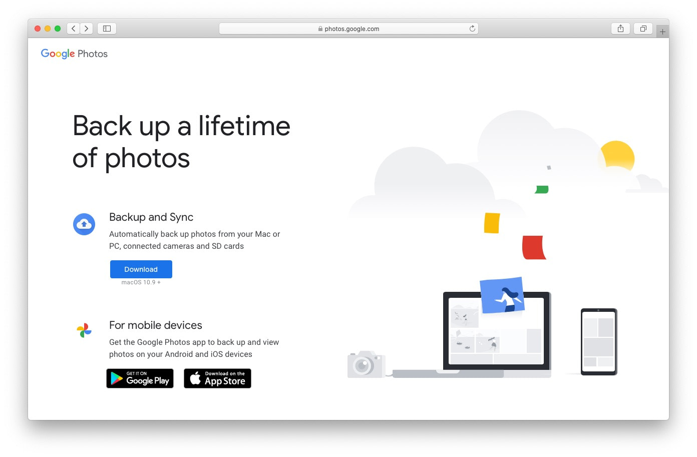 Google Photos image management software